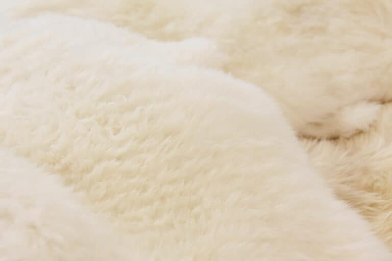 Tvätta / rengöra fårskinn